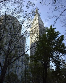 Looking east in Madison Square Park